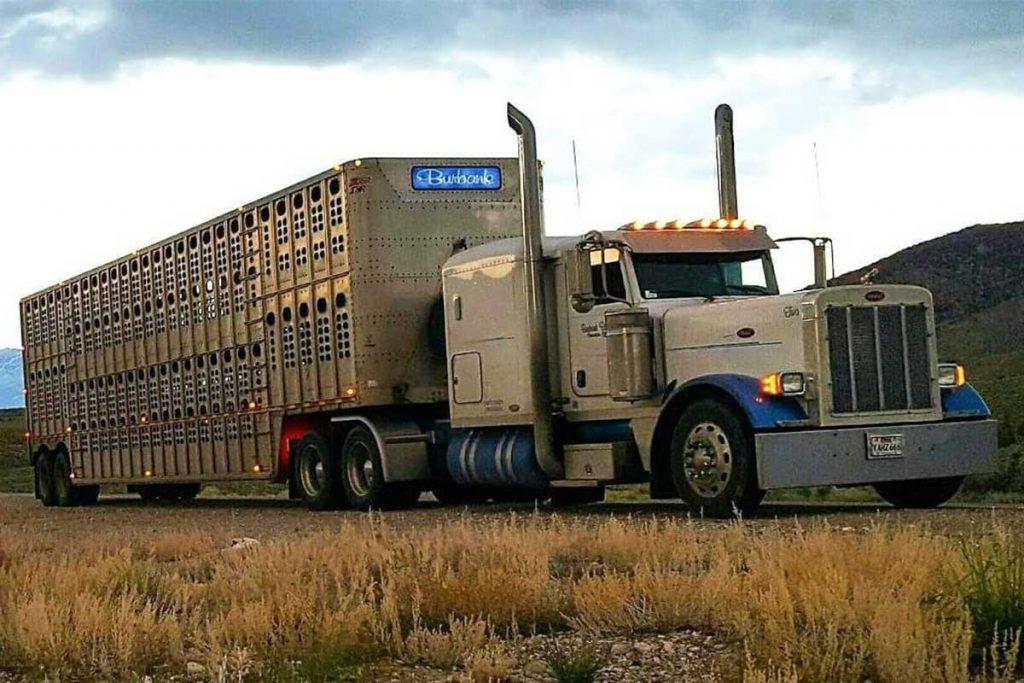 Burbank Ranching